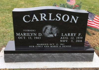 Double Carlson Larry (Small)